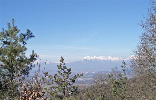 Debni vrh, view