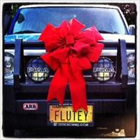 Flutey's FJ