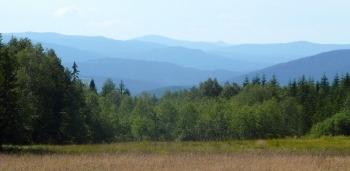 Pohled přes údolí Vydry