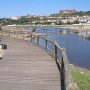 River Side Wooden Path