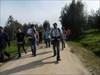 Caminhada log image