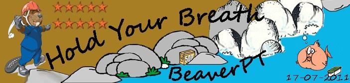 As 500 caches do BeaverPT