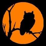 Nite*Owls