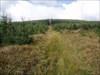 Cesta na kopec