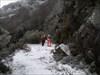 As primeiras pegadas pela neve. log image