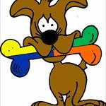 Team Shydog