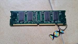 Androhius - RAM