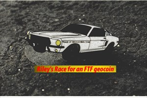 Race for an FTF geocoin