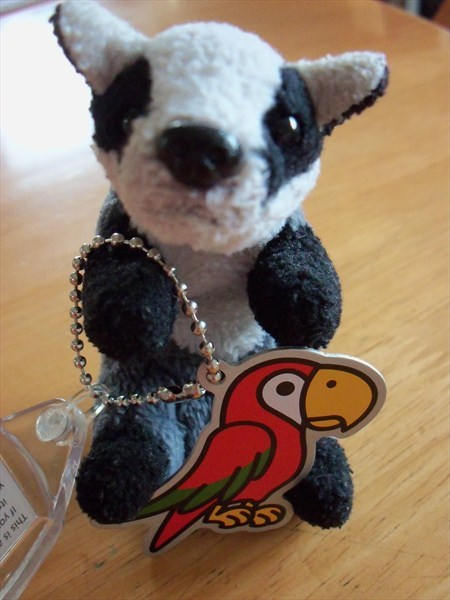 Trackable for Geocaching Polly the Parrot Cache Buddy