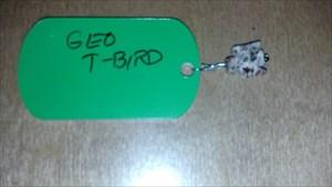 geo t-bird