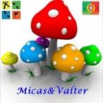 Micas&Valter