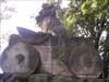 Lev na koleckach :-) :-)