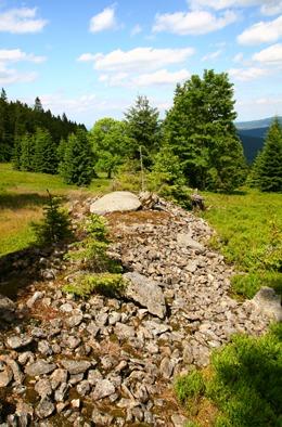 Snos kamení na louce