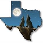 Team Texas Coyote