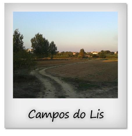 Campos do Lis