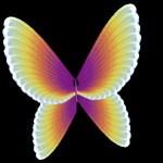 miss_butterfly