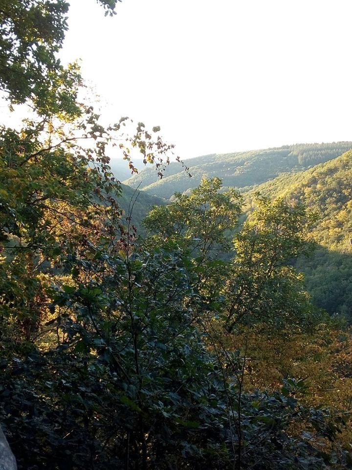 Aussicht übers Baybachtal