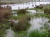 Barragem da Boavista 4