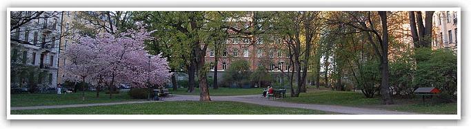 Stureparken