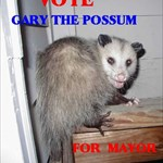 Gary the Possum