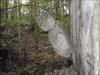 ... und ein netter Mitbewohner: Hangman log image