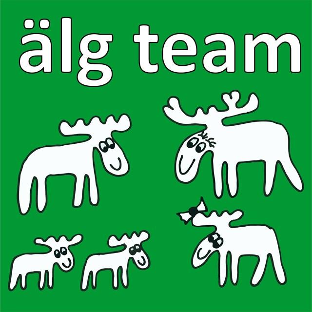 avatar de alg team