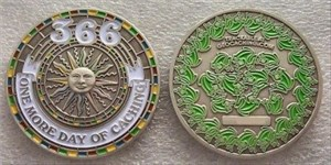 leap year coin