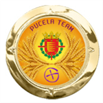 Pucela-Team