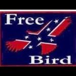 FreeBird65