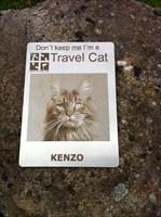 Kenzo_Neuauflage