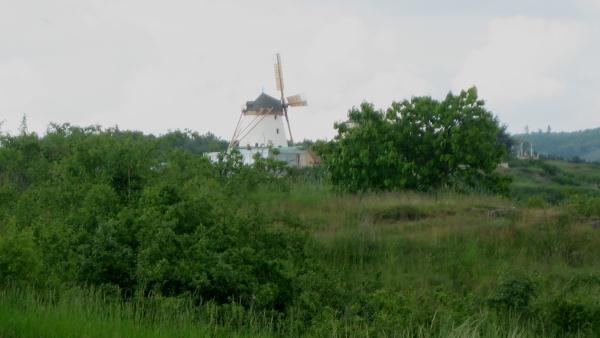 Blick zur Windmühle
