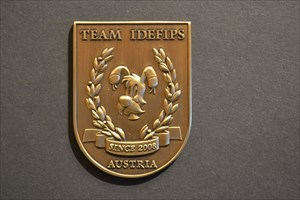 Team Idefips Personal Geocoin