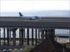 Plane on the Bridge
