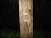 1/311 Telephone Pole