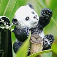 Fu Ban der Panda
