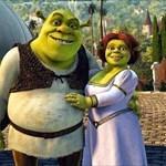 Shrek&Princess Fiona
