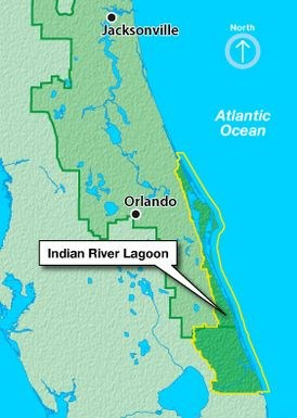 Indian River Florida Map.Gc5g6pj Sediment Strewn Lagoon Earthcache In Florida United