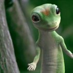 Geckoh