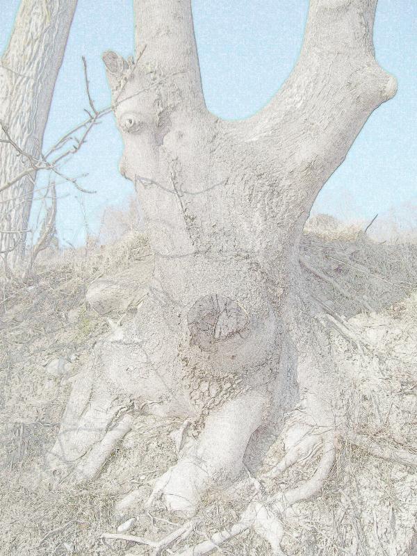 Der Waldzerggnomhorngeist