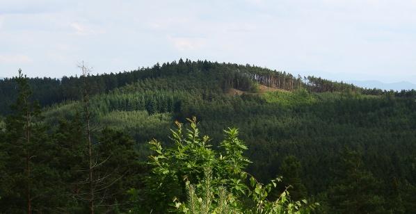 Písečný vrch při pohledu z Racovského vrchu