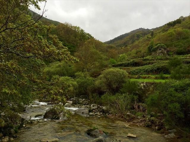 Rio Ramiscal