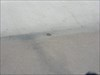 G 174 Disc (Distant Shot) - Hoover Dam, NV.JPG