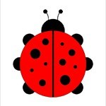 Ladybird85