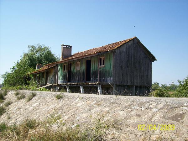 aldeia do patacão