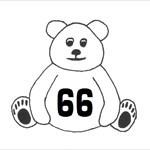 teddy.66
