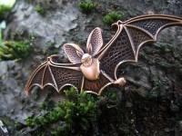 swama creatures of nightcaching bat