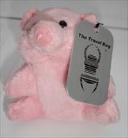 Marita's-little-piglet