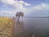 Na ilha