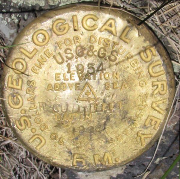 f1509d19-6ccf-47e5-b004-4ade8477cb05.jpg