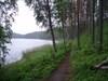 P1010063 Valkialammen rantaa.